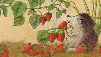 igelerdbeeren-web